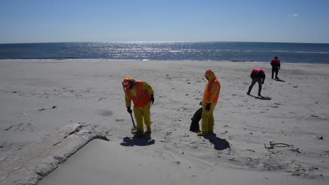 environmental crew members conduct a shore clean-up of tar balls april 1 at rockaway beach in new york. - pulizia dell'ambiente video stock e b–roll