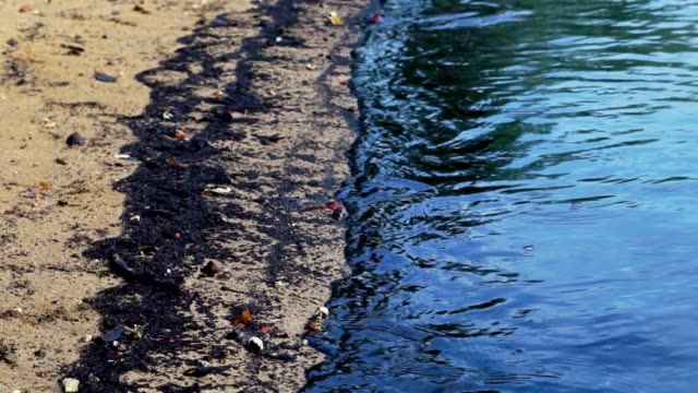 environmental disaster: oil spill washing onto beach - pollution stock videos & royalty-free footage