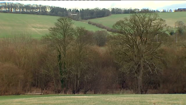environmental impact of high speed 2 buckinghamshire old amersham ext houses seen beyond field various gvs of trees and fields in countryside - バッキンガムシャー点の映像素材/bロール
