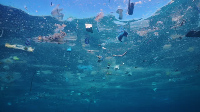 environmental issue plastic in the ocean - galleggiare sull'acqua video stock e b–roll
