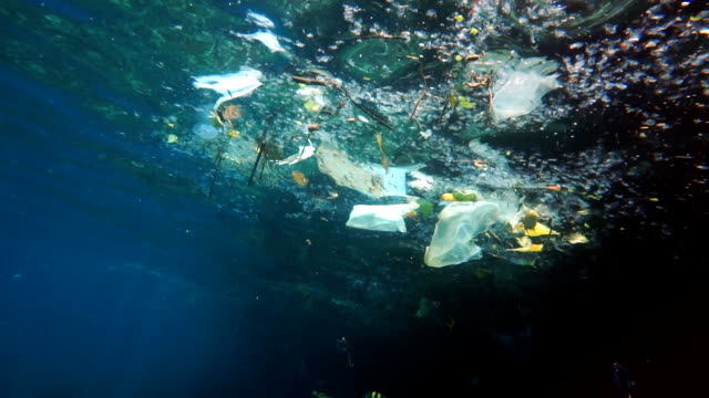 environmental issue: plastic in the ocean - ruined stock videos & royalty-free footage