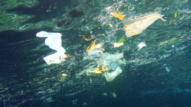 vídeos de stock e filmes b-roll de environmental issue: plastic in the ocean - lixo