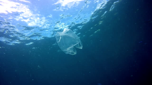 environmental issue: plastic in the ocean - plastic stock videos & royalty-free footage