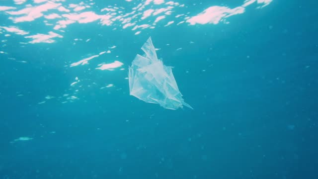 environmental issue: plastic in the ocean - dirty stock videos & royalty-free footage