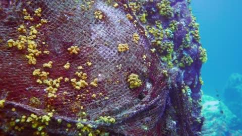 vídeos y material grabado en eventos de stock de tema ambiental: material submarino abandonado ' fantasma de redes de pesca ' contaminando el océano - islas phi phi