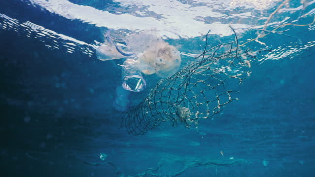 environmental issue underwater plastic in the ocean - disposable stock videos and b-roll footage
