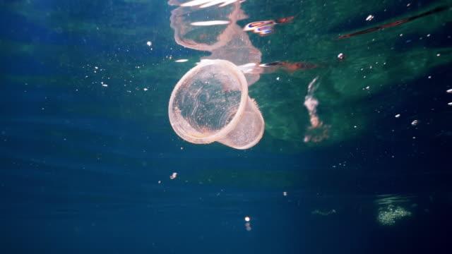 miljöfråga undervattens plast i havet - engångsmugg bildbanksvideor och videomaterial från bakom kulisserna