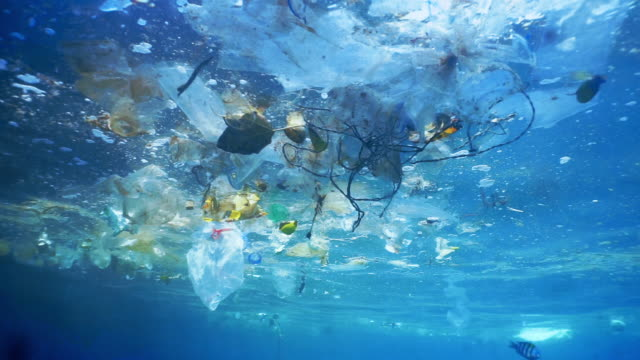 environmental issue underwater plastic pollution in the ocean - bottiglia video stock e b–roll