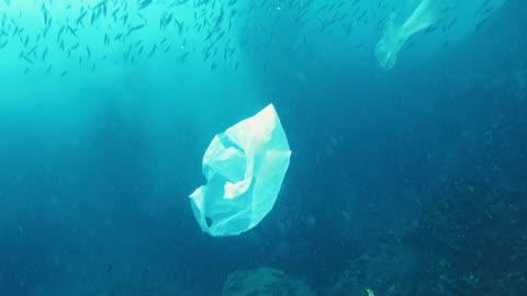vídeos y material grabado en eventos de stock de medio ambiente problemas solo uso de plástico en el océano - bolsa de plástico