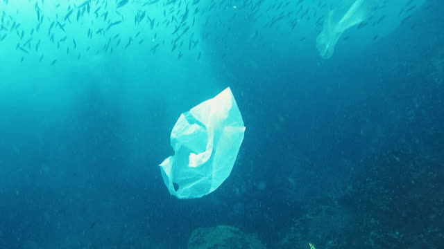 vídeos de stock e filmes b-roll de environmental issues single use plastic in the ocean - lixo