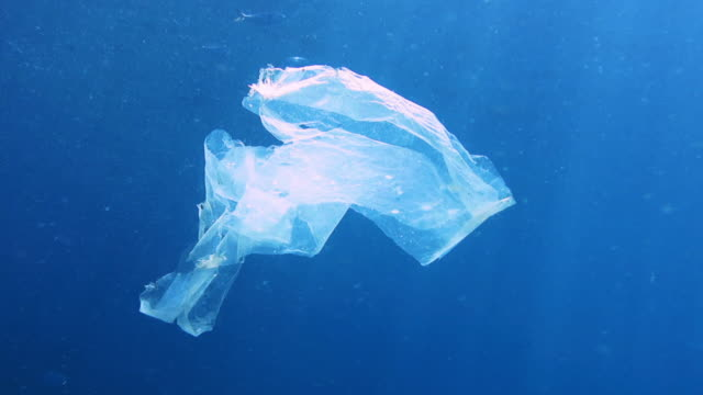 environmental issues single use plastic in the ocean - floating on water stock videos & royalty-free footage