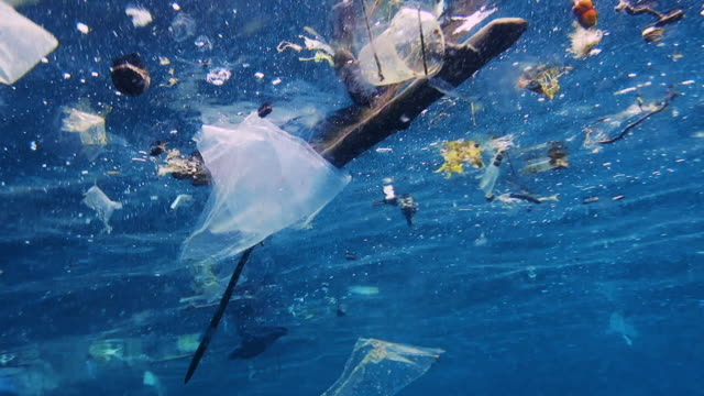 environmental issues: single use plastic in the ocean - pollution stock videos & royalty-free footage