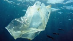 Environmental Issues Single use Plastic in the Ocean