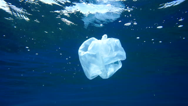 environmental issues: single use plastic in the ocean - bag stock videos & royalty-free footage