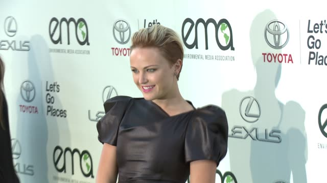 environmental media awards presented by toyota & lexus at warner bros. studios on october 18, 2014 in burbank, california. - environmental media awards stock-videos und b-roll-filmmaterial
