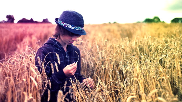 environmental portrait of rural boy in a wheat field - kansas stock videos & royalty-free footage