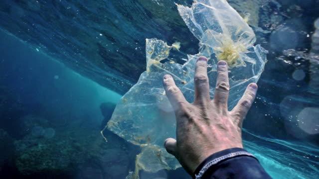 environmentalist volunteer on plastic in the ocean clean up - environmental cleanup stock videos & royalty-free footage
