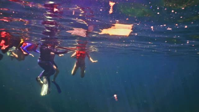 stockvideo's en b-roll-footage met milieuactivist vrijwilligers op plastic in de oceaan schoon te maken - eco tourism