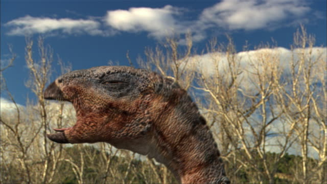 cgi, cu, eoraptor looking around and roaring, headshot - paleozoology stock videos and b-roll footage