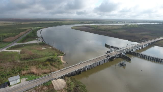 epic side tracking over bridge with truck drive away - drone aerial 4k everglades, swamp bayou with wildlife alligator nesting ibis, anhinga, cormorant, snowy egret, spoonbill, blue heron, eagle, hawk, cypress 4k nature/wildlife/weather drone aerial video - bayou lafourche stock-videos und b-roll-filmmaterial