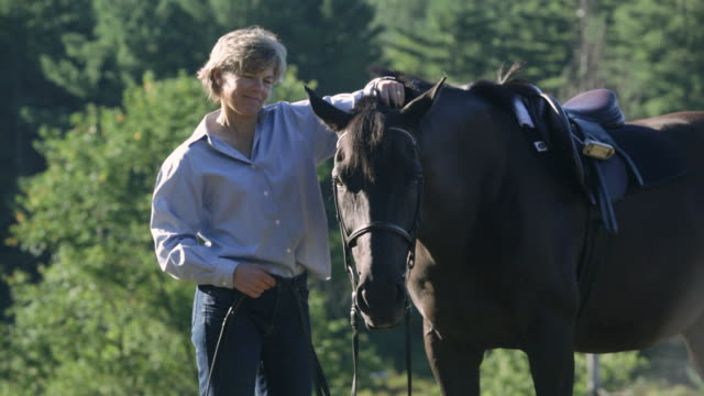 vídeos de stock, filmes e b-roll de  ms equestrian petting a horse in a wooded field / stowe, vermont, united states - acariciando