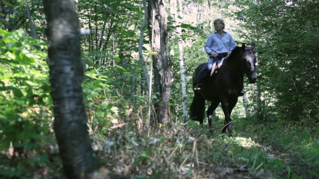 stockvideo's en b-roll-footage met  ds equestrian riding a horse on a path through woods / stowe, vermont, united states - recreatief paardrijden