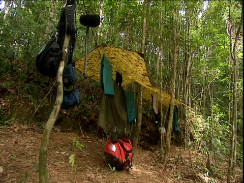 equipment hangs above jungle floor under bivouac shelter amazon rainforest venezuela - tourist stock videos & royalty-free footage