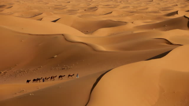 erg-chigaga sand dunes. sahara desert. high-angle-view of camel-drivers and camel caravan, mhamid, morocco - sand dune stock videos and b-roll footage
