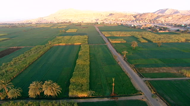 erial view of gurneh village and deir el-bahari in the distance and agricultural fields on the west bank of the nile opposite luxor. - desert stock videos & royalty-free footage