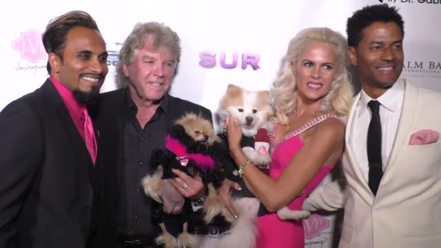 vídeos y material grabado en eventos de stock de eric benet iwona burnat reggie benjamin ken todd at the vanderpump dog foundation gala on november 03 2016 in hollywood california - eric benet