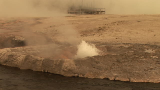 stockvideo's en b-roll-footage met ms, erupting geyser by firehole river, black sand basin, yellowstone national park, wyoming, usa - sepiakleurig