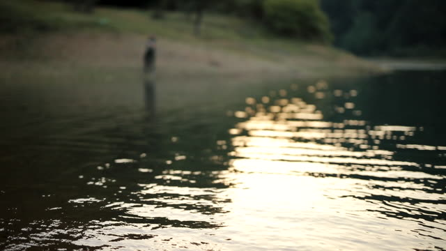 escaping everyday life - walking in water stock videos & royalty-free footage