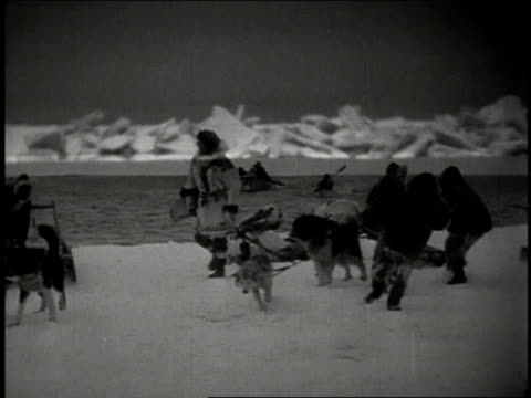 ts eskimos, sled dogs, and sleds on snow preparing to travel - inuit stock videos & royalty-free footage