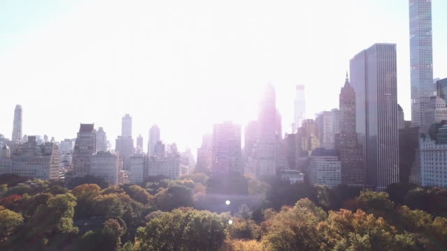 Establishing shot of a New York City sunrise in Central Park.