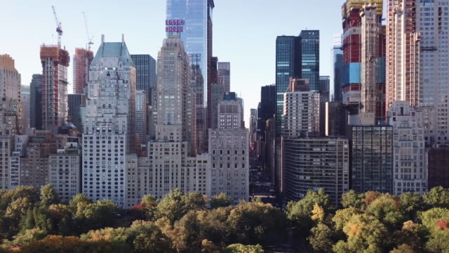 establishing shot of a new york city sunrise in central park. - schwenk stock-videos und b-roll-filmmaterial