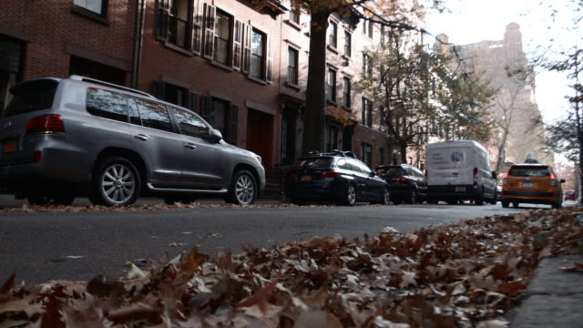 establishing shot of a quiet brooklyn block on an autumn afternoon. - stationary stock videos & royalty-free footage