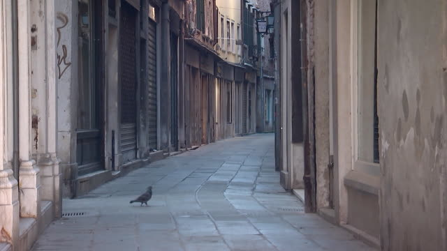 establishing shot of an empty street in venice italy during the coronavirus pandemic - business or economy or employment and labor or financial market or finance or agriculture video stock e b–roll