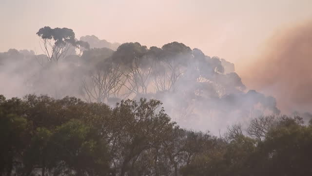 establishing shot of smoke rising from brush fires in australia. - environment or natural disaster or climate change or earthquake or hurricane or extreme weather or oil spill or volcano or tornado or flooding stock videos & royalty-free footage