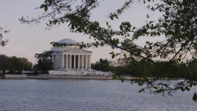 establishing shot of the jefferson memorial in dc from behind a tree - jefferson memorial stock videos & royalty-free footage
