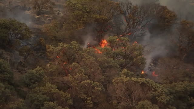 establishing shot of wildfires burning in lake hughes, california. - environment or natural disaster or climate change or earthquake or hurricane or extreme weather or oil spill or volcano or tornado or flooding stock videos & royalty-free footage