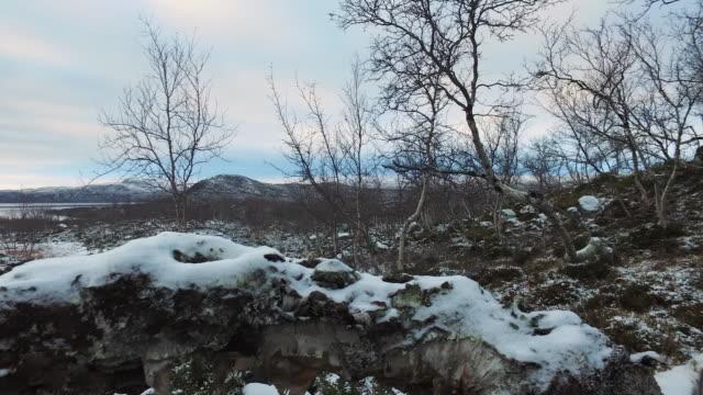 Establishing shot showing a birdhouse in a frozen landscape, Lapland, Finland