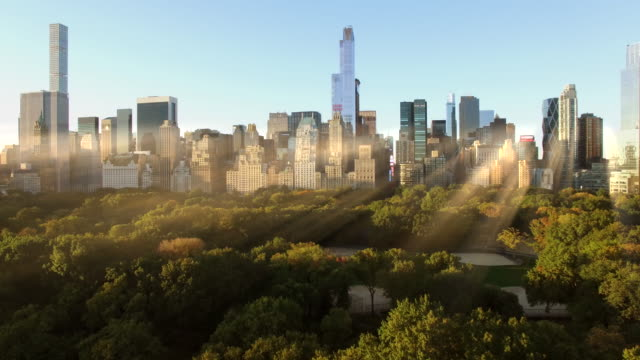 establishment shot of central park in new york city. sunrise light beams
