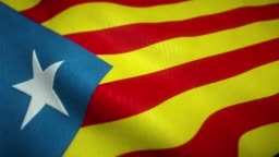 Estelada flag of the separatist movement of catalonia waving in the wind