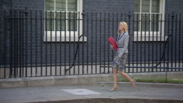 esther mcvey entering 10 downing street - governmental occupation stock videos & royalty-free footage