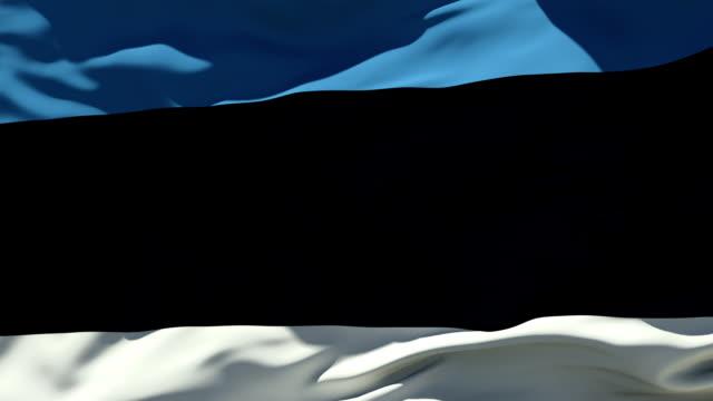Estonia Flag   Loopable