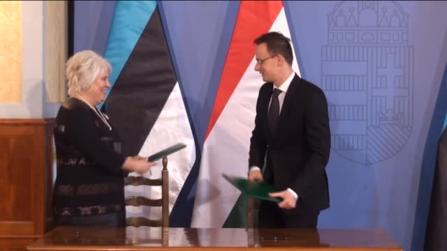 estonian foreign minister marina kaljurand and hungarian minister of foreign affairs and trade peter szijjarto hold a joint press conference after a... - traditionally hungarian stock videos & royalty-free footage