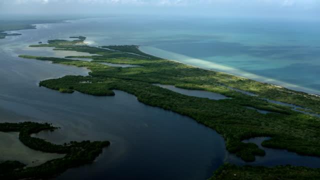 Estuary On Gulf Of Mexico In Yucatan