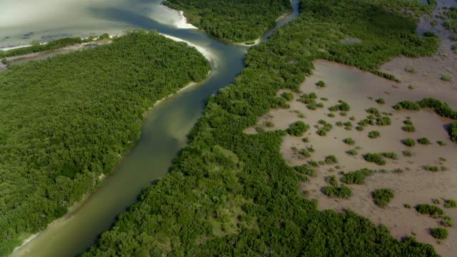 estuary on yucatan coastline mexico - estuary stock videos & royalty-free footage