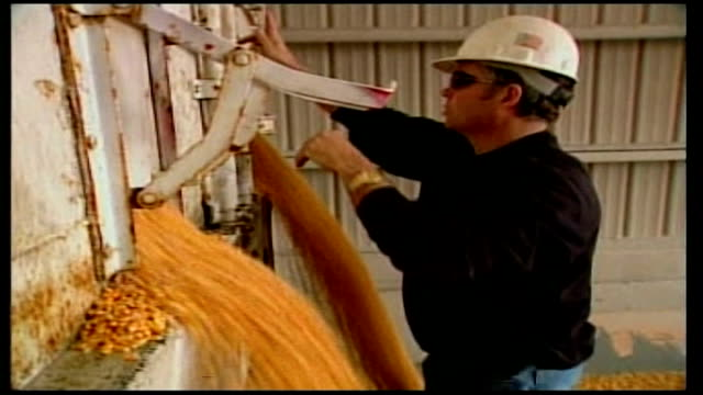 vídeos de stock, filmes e b-roll de george w bush to broker deal on upcoming visit usa location unknown ext american farm with corn grains pouring out from harvesting machinery and into... - etanol