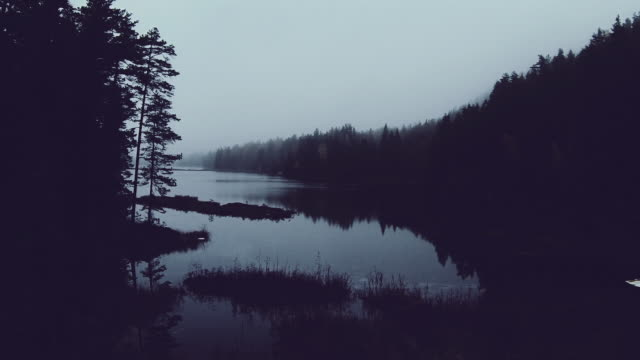 Ethereal drone shot in a forest above lake in morning mist